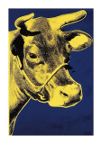 Cow  c1971 (Blue and Yellow)
