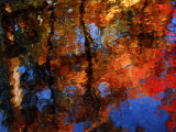 Reflection of Red Maples and Blue Sky in Creek  Sedona  Arizona  USA