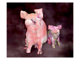 Pig and Piglet Statues