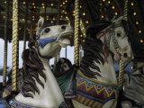 Carousel Horses at Veteran's Park