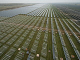 Solar Panels on Brackets Arrayed across Waldpolenz Solar Park