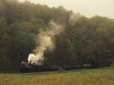 Cass Scenic Railroad Running Along the Edge of a Forest