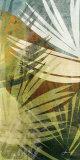 Feuille de palmier II Reproduction d'art par James Burghardt