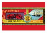 Pioneer Brand Fresh Lobster