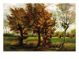 Autumn Landscape with Four Trees