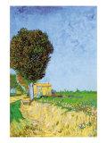 Alane Near Arles