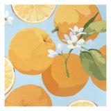 Fresh Oranges Giclée premium par Martha Negley