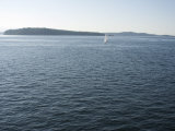 Sailboat on the Puget Sound Passes Blake Island  Washington State  United States of America