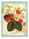 Vintage Botanical Garden Print