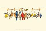 Bird Menagerie II