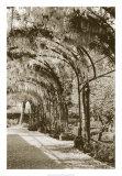 Queen's Garden  Kew  UK