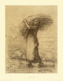 Gleaning Woman