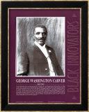 Great Black Innovators - George Washington Carver