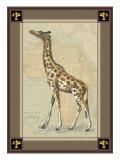 Giraffe with Border I