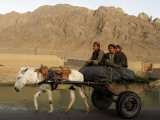 Afghan Kids Ride on a Horse Carriage in Kandahar City  Afghanistan