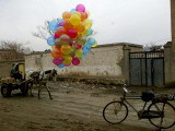 Horse Drawn Cart Drives Past as Balloons Tied to a Bicycle Flutter in the Wind