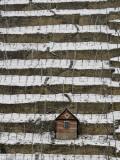 Snow Covered Vineyard is Seen in Stuttgart  Germany
