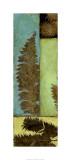 Fossilized Ferns II