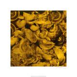 Nautilus in Gold I