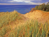 Sand Dunes Along Lake Superior at Pictured Rocks National Seashore  Grand Marais  Michigan  USA