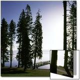 Dock at Ehrman Mansion  Sugar Pine Point State Park  Lake Tahoe  California  USA