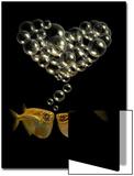 Tetra Fish Blowing Bubbles in Heart Shape