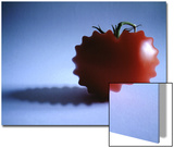 Mutated Red Tomato on Blue Background