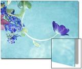 Flower Bouquet Floating in Water