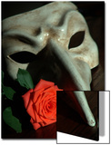 Still Life Photograph  a Traditional Venetian Mask with a Rose