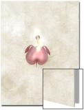 Still Life of a Flower