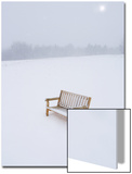 Wooden Bench in a Snow Storm