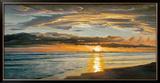 Shoreline Splendor