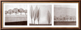Leaf Landscape Triptych