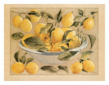 Coupe d'Agrumes  Citrons