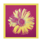 Daisy, c.1982 (Fuchsia and Yellow) Giclée par Andy Warhol