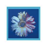 Daisy  c1982 (Blue on Blue)