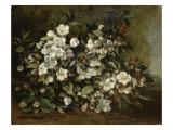 A Branch of Apple Blossoms also Said Cherry Blossoms Giclée par Gustave Courbet
