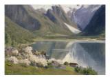 Norvège  bord d'un fjord au printemps 1896