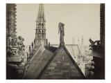 Notre-Dame de Paris  les combles pris de la Galerie des Tours