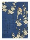 Bouvreuil et cerisier-pleureur Giclée par Katsushika Hokusai