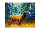 Alaskan Elk