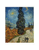 Country Road in Provence by Night  c1890