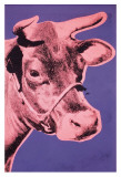Cow  1976