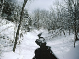 A Winter View of Rush Brook  Camel's Hump State Park  Vermont