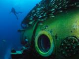 A School of Fish and a Diver Swim around the Research Vessel Aquarius