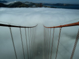 Cables of the Golden Gate Bridge Above the Early Morning Fog