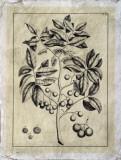 Embellished Antique Foliage VI