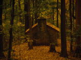 A Little Stone Shelter in a Woodland Setting