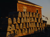 Neatly Stacked Lobster Traps at a Fishing Camp  Gros Morne Np  Newfoundland  Canada