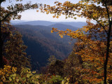 A Blue Ridge Mountain Escarpment Framed by Maple Trees in Autumn Hues